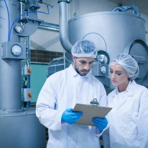 Food Processing image